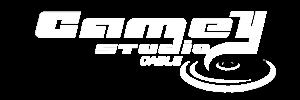 Logo-camey-białe.png